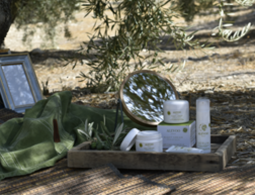 Differences between conventional, natural and organic cosmetics
